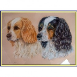 OLD SPANIEL DOG PASTEL PAINTING PAIR DOGS ART (ID:4226)